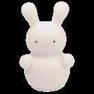 2025301059-Rachel-Rabbit-Front