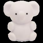 2025301079-Kai-Koala-Front
